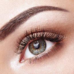 Eyelash Extensions 101 - Timeless Aesthetics